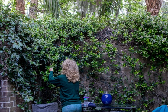 Cindy tends to the haning vines on the patio.