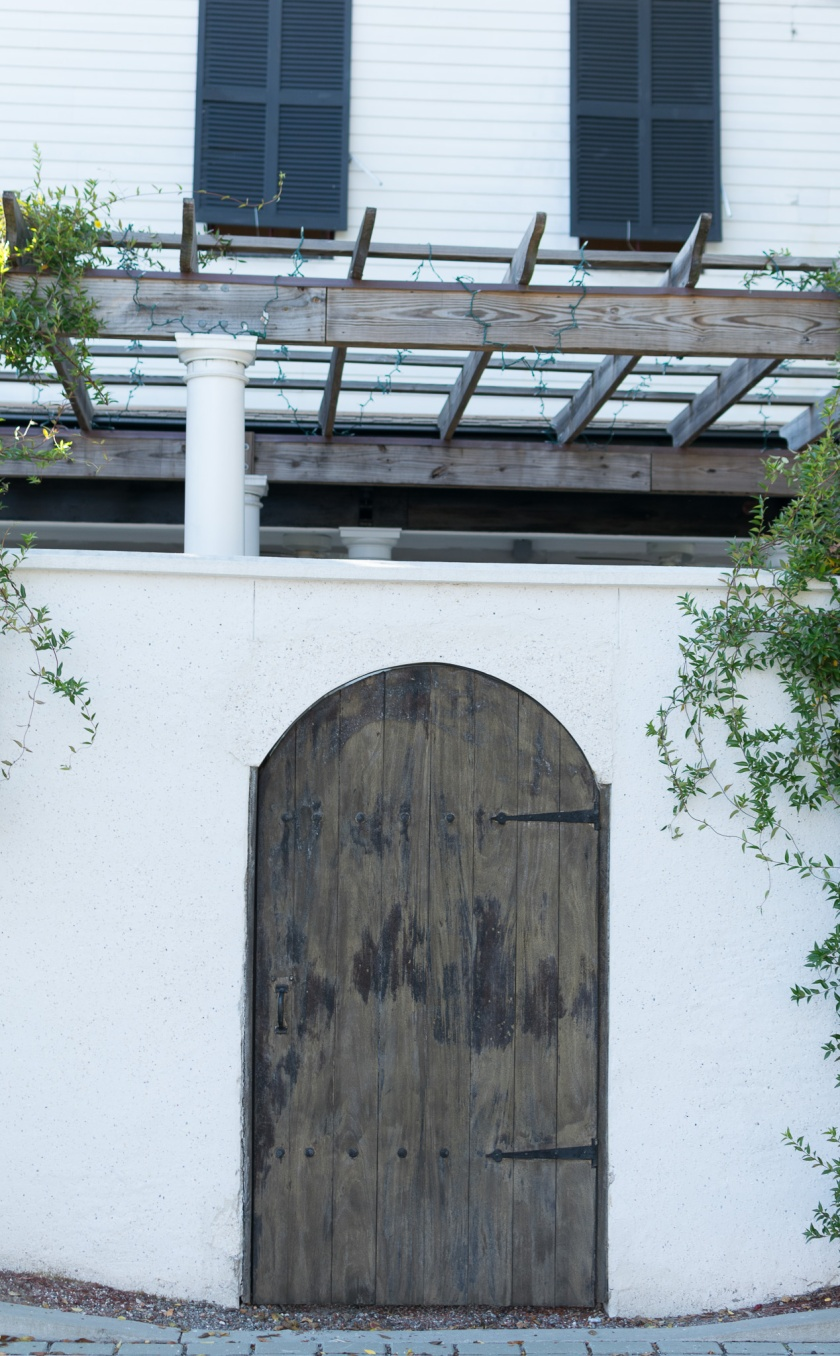 Photo of the arched door with vines hanging on either side and the pergola above.